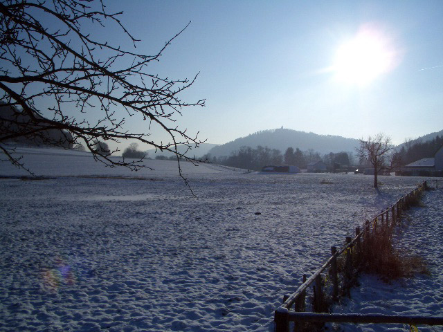 Winterdaheim